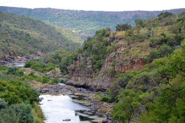 Olifants Mid Winter