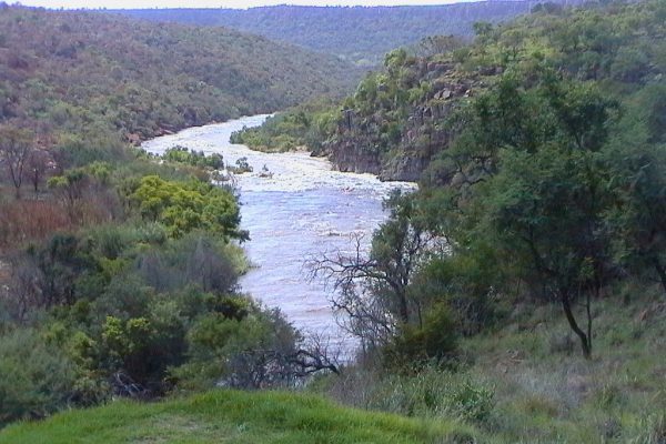 Olifants river in flood